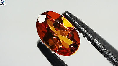 1x Spessartin Granat - Oval facettiert 0,29ct. 3,3x5,0mm (1452F)