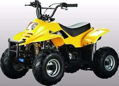 XTM  70cc YELLOW Quad Parents Remote Safety Kill Switch!!!!!!