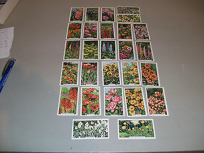 cigarette cards from gallaher ltd. wild flowers