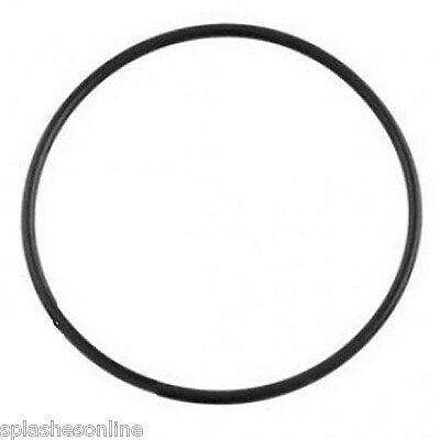 #78105 Genuine Astral Hurlcon Zx Cartridge Filter Lid O Ring