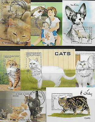 Cats On Two Stock Cards Used C.t.o.+ 8 M/s..# 5.