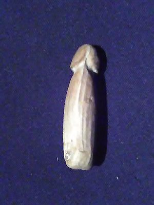 Million year old dick! Handcarved petrified wood penis, sexy Valentine's gift!