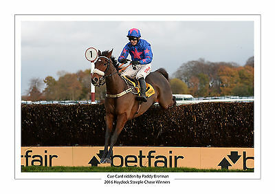 Cue Card Paddy Brennan 2016 Haydock Steeple Chase Horse Racing A4 Photo