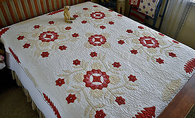 Hand Stitched 19th century Rose of Sharon Applique Quilt with Border 10 S.P.I.
