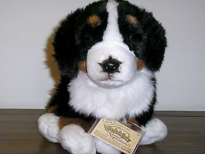 New Webkinz Signature Bernese Mountain Dog With Sealed Code Tag ~ Actual Photos
