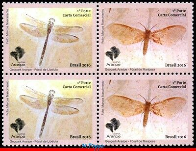 16-26-Q Brazil 2016 Araripe Geopark, Insects Fossils, Dragonfly & Butterfly, Mnh