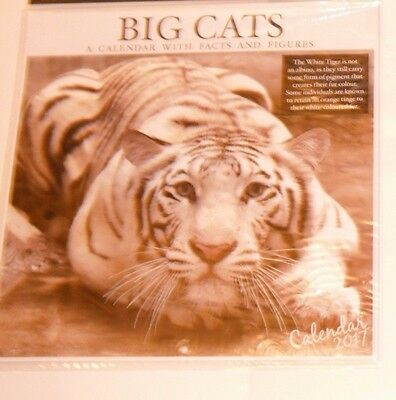 New 2017 Big Cats Square Wall Planner Calendar Monthly View. F3