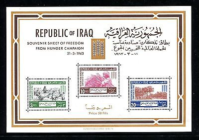 Iraq 1963 Freedom from Hunger S Sheet SG639 MNH