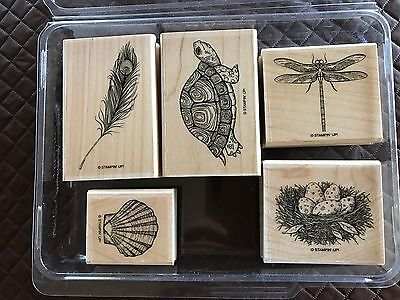 "Stampin' Up! ""Nature's Nest"" Wood Mount Stamp Set (Retired)"