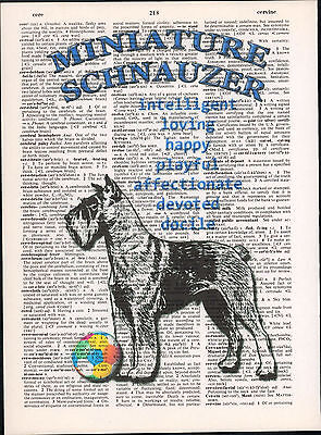 Miniature Schnauzer Dog Trait Altered Art Print Upcycled Vintage Dictionary Page