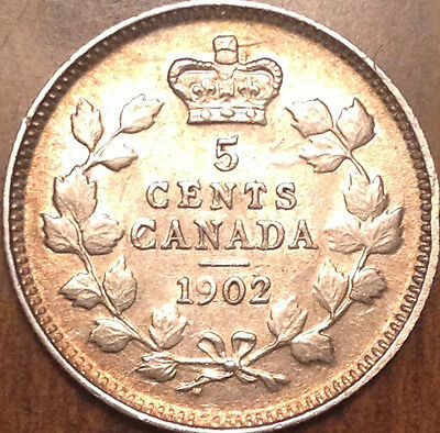 1902 Canada Silver 5 Cents Superb Example In Great Condition !!!