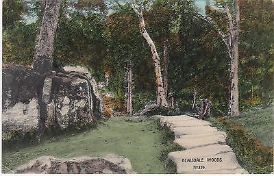 The Woods & Flagged Path, GLAISDALE, Yorkshire - Phoenix Series