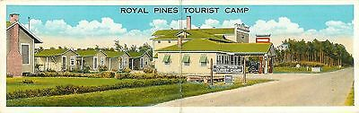 Charleston SC~Coastal Hwy Royal Pines Tourist Camp~Gas Station~Double Wide 1931