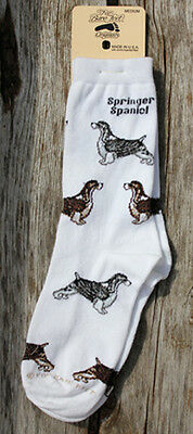 English Springer Spaniel socks by Bare Feet NEW