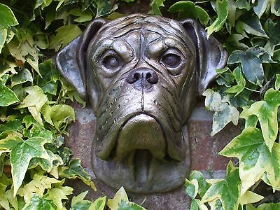 Big Boxer Dogs Bronzed  Stone Head Wall Sculpture