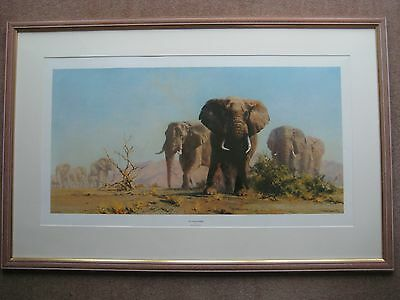 """Large Framed Print """"The Ivory is Theirs"""" by David Shepherd"""