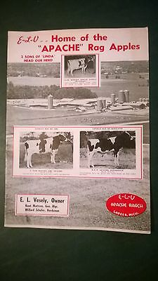 E-L-V Apache Ranch 1971 Holstein Dairy Herd Directory Book Lapeer Michigan