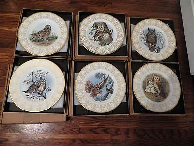 Set Of 6 Edward Marshall BOEHM Porcelain Ltd Edition OWL Plate Collection MIB