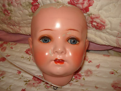Antique Dolls Head Only