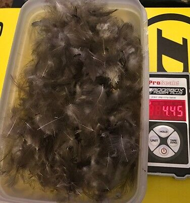 Large Bulk CDC Feathers Fly Tying 4g Dry Fly And Nymphs 1