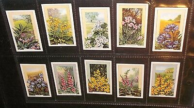 10 Gallaher Cigarette Cards  Wild Flowers