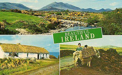 BEAUTIFUL Ireland POSTCARD Scenic Mountain Landscape Thatched Roof Cottage