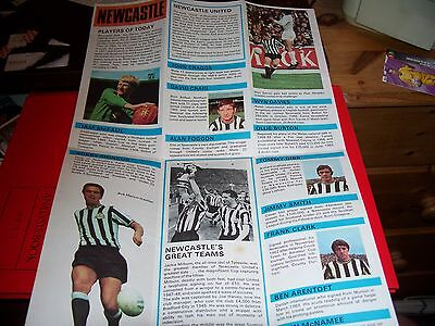 Newcastle United Cup Soccer 71