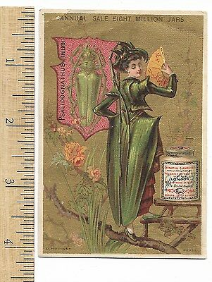 Liebig Extract of Meat Insect Bug Girl BEETLE English EN-21 S.118 Trade Card