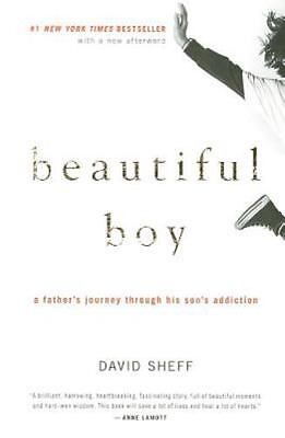 Beautiful Boy: A Father's Journey Through His Son'