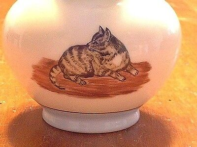 Antique Haviland Limoges Hand Painted Cat Portrait Pitcher