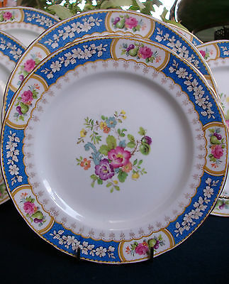 SUTHERLAND CHINA, H&M- EVESHAM R2278 (c.1947+) SALAD PLATE(s)- EXCELLENT! GILT!
