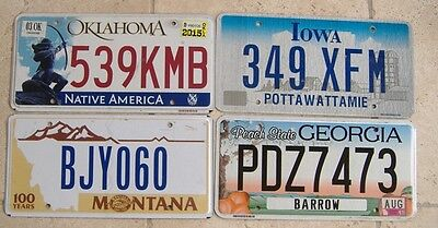 4 Flat Based Number Plates From Different States