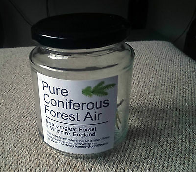 Pure Forest Air Jar