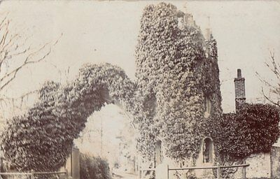 WOODBRIDGE ( Suffolk) : Ivy-covered ruins of a church tower RP-WELTON