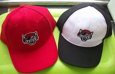 2 NEW DETROIT TIGERS  MINOR LEAGUE BASEBALL TEAM ERIE SEAWOLVES HATS COOL NEAt