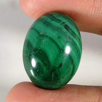 36.20CT Oval Natural Cabochon Malachite Loose Gemstone Aura.gems