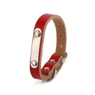 Cow Leather Pet Dog Cat Puppy Collar Neck Buckle Adjustable Strap XS-L