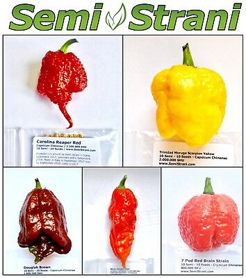50 SEEDS of the 5 WORLDs HOTTEST CHILI PEPPERs Coll. 5: REAPER, MORUGA, GHOST