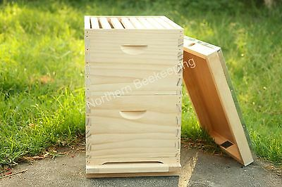 16 Frame Double Beehive With Frames Brood Bee Box Nz Pine Hive Pickup Available