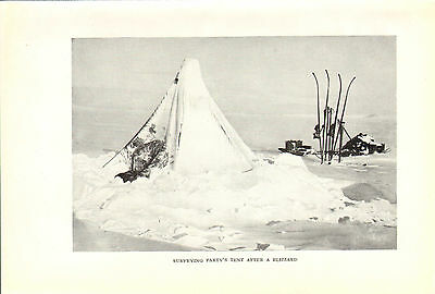 scotts last expedition 1913 plate - surveying party's tent after a blizzard