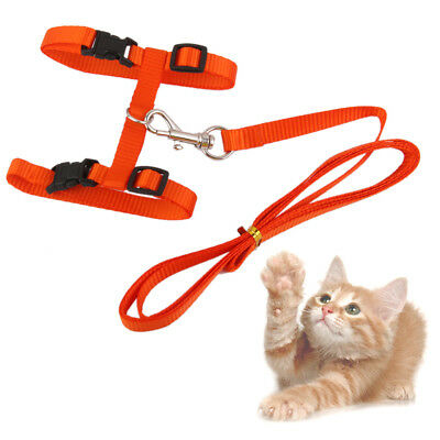 Adjustable Pet Cat Belt Nylon Leash Collar Harness Strap Rope + Lead Orange