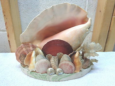 Vintage Conch Seashell TV Lamp~Night Light~Works!