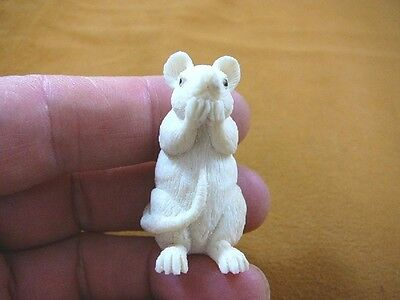 (RAT-4) white Rat shed ANTLER figurine Bali detailed carving pet love rats mouse