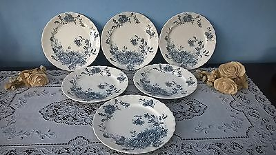 """KEELING & Co LATE MAYERS DAISY 6 x SIDE PLATES 1790 (c1900) 8"""" approx"""