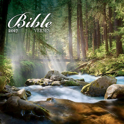 "Bible Verses 2017 Wall Calendar by Turner/Lang (12"" x 24"" when opened)"