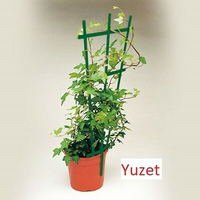 YUZET PLANT TRELLIS lips on pot square or round support plastic climbing plants