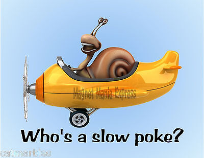 METAL REFRIGERATOR MAGNET Laughing Snail Flying Plane Who's A Slow Poke Humor