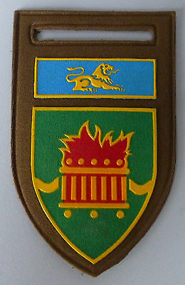 SOUTH AFRICA ARMY REGIMENT DAN PIENAAR OFS AFRICAN LION FLAMES 1980s ARM PATCH