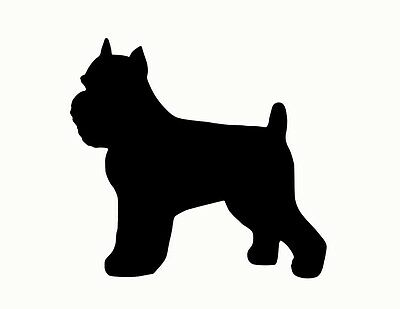 Brussels Griffon 10 inch  silhouette cropped ears NOT PAINTED