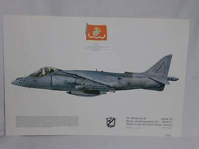 AV-8B Harrier II Marine Attack Squadron 214 Original Aviation Art Print (32)